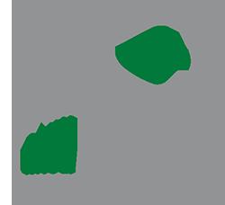 170621_AF_Logo